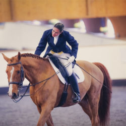 piaffe-performance-dressage